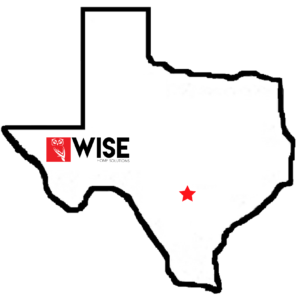 texas security systems