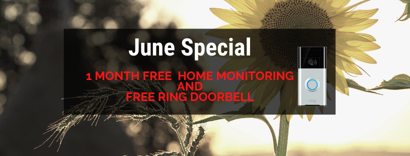 Wise June Special